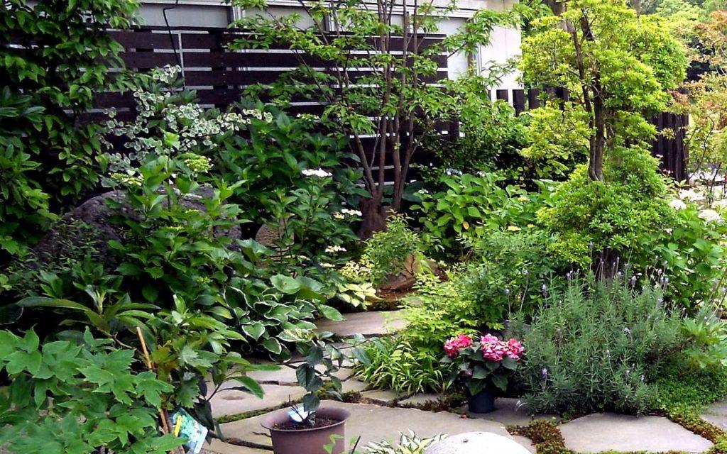 施工事例「自然風の庭」